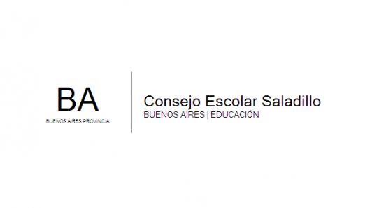 logo ConsejoEscolarSaladillo