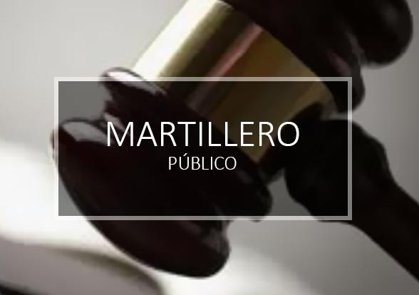 Logo MARTILLERO