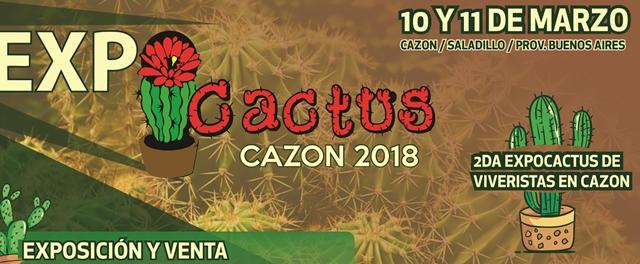 expo cactus (2)