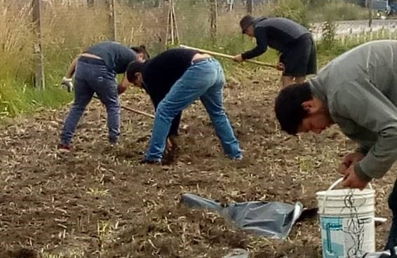 huerta coop-crop