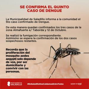 dengue5
